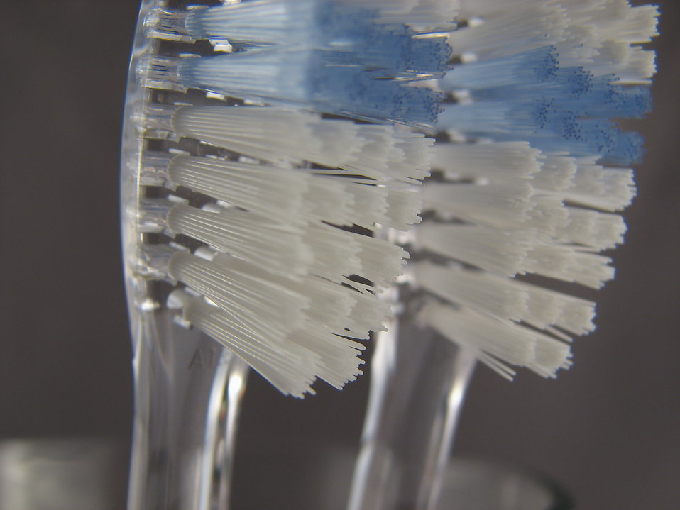 Closeup of toothbrushes : Free Stock Photo