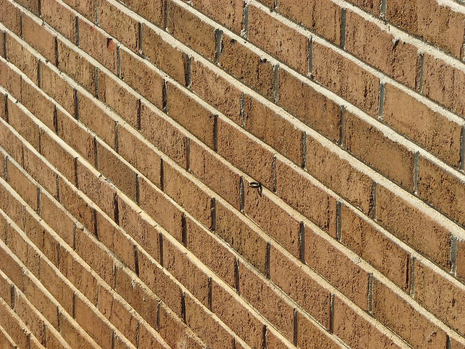 Brick wall : Free Stock Photo