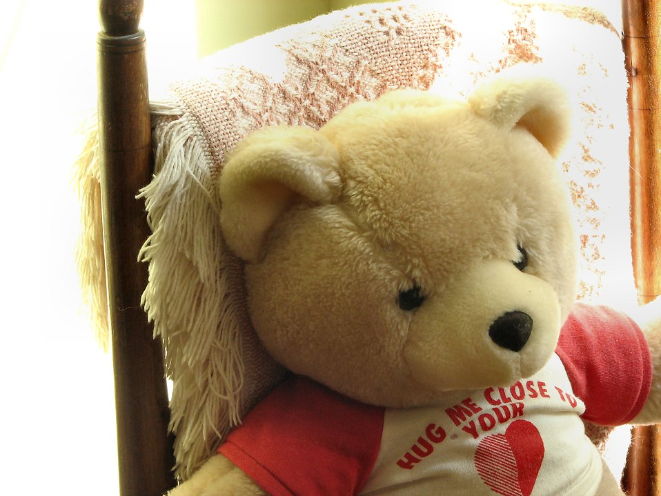 Teddy bear in a chair : Free Stock Photo