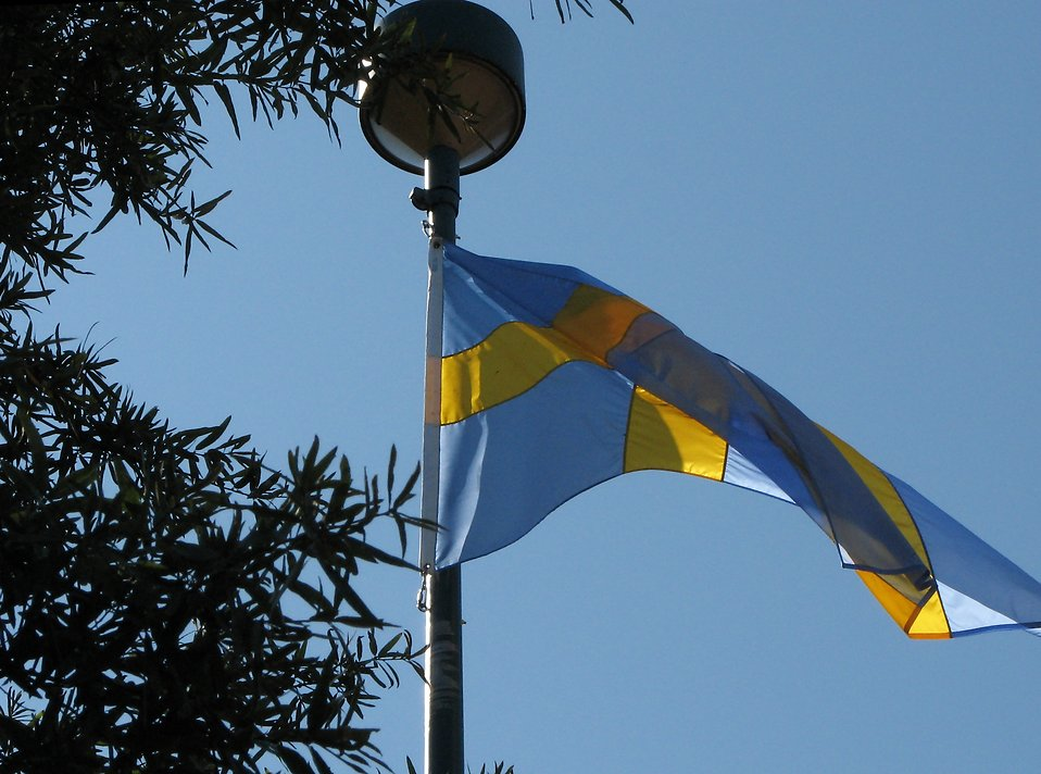 Swedish flag in the wind : Free Stock Photo