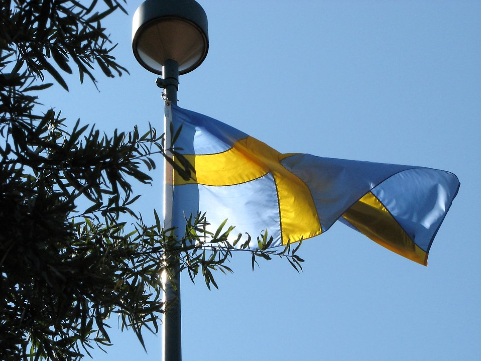 Swedish flag blowing in the wind. Free Stock Photo: Swedish flag blowing in ...