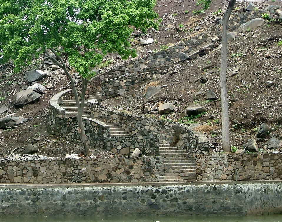 Stone steps down a river bank : Free Stock Photo