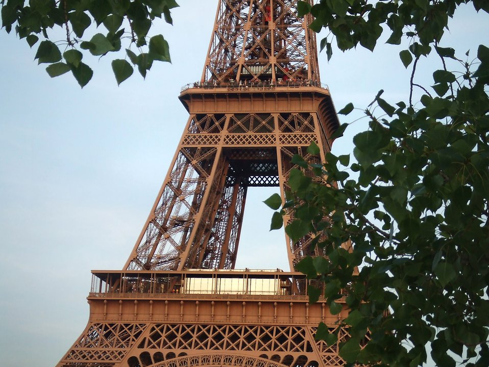 The Eiffel Tower : Free Stock Photo