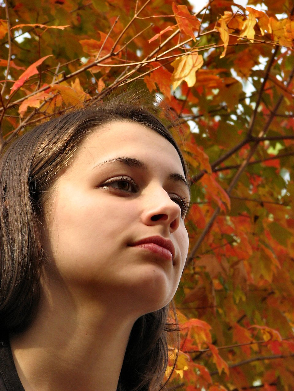 Closeup outdoor portrait of a teen girl : Free Stock Photo