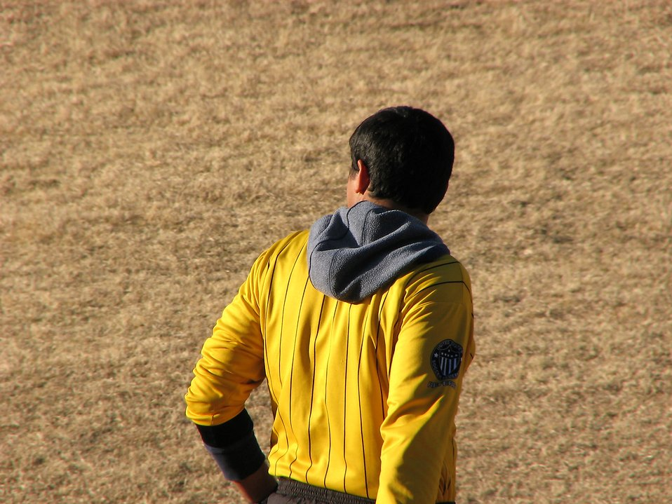 Back of a soccer referee : Free Stock Photo