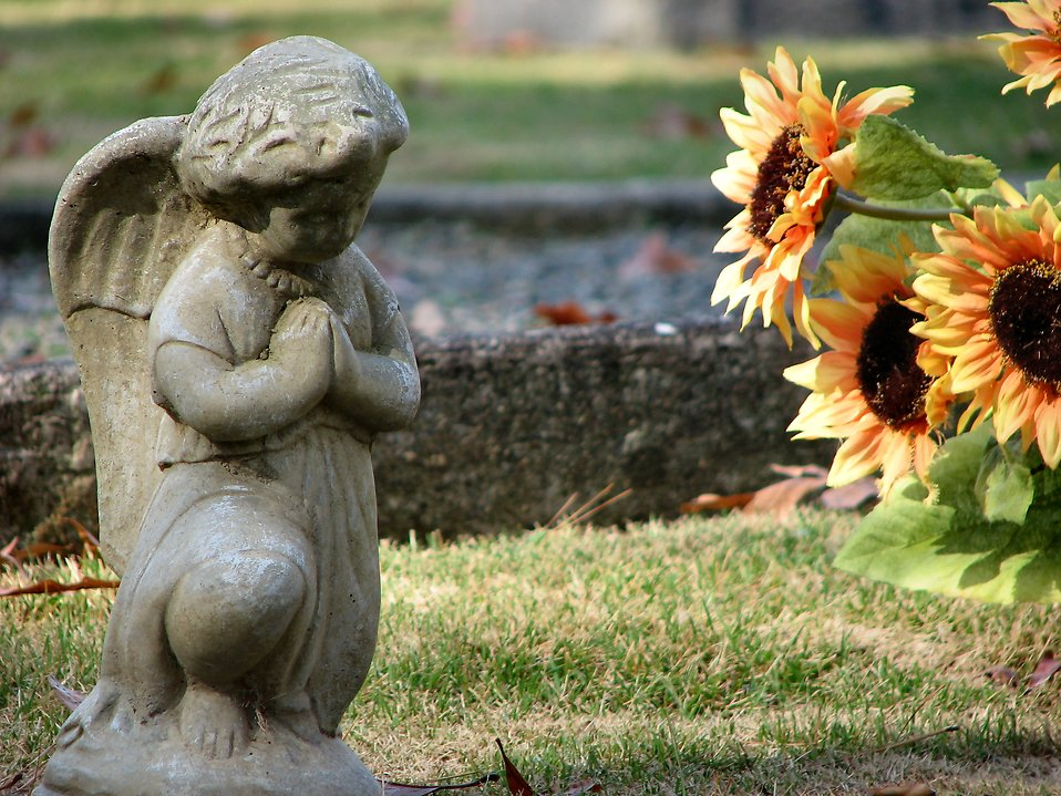 Statue of an angel by some orange flowers : Free Stock Photo