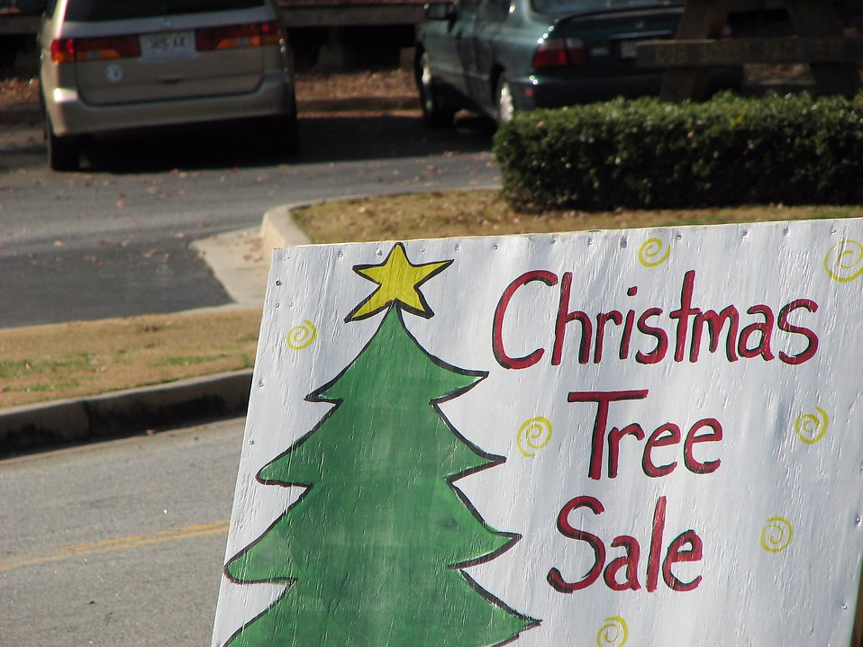 Christmas tree sale sign : Free Stock Photo
