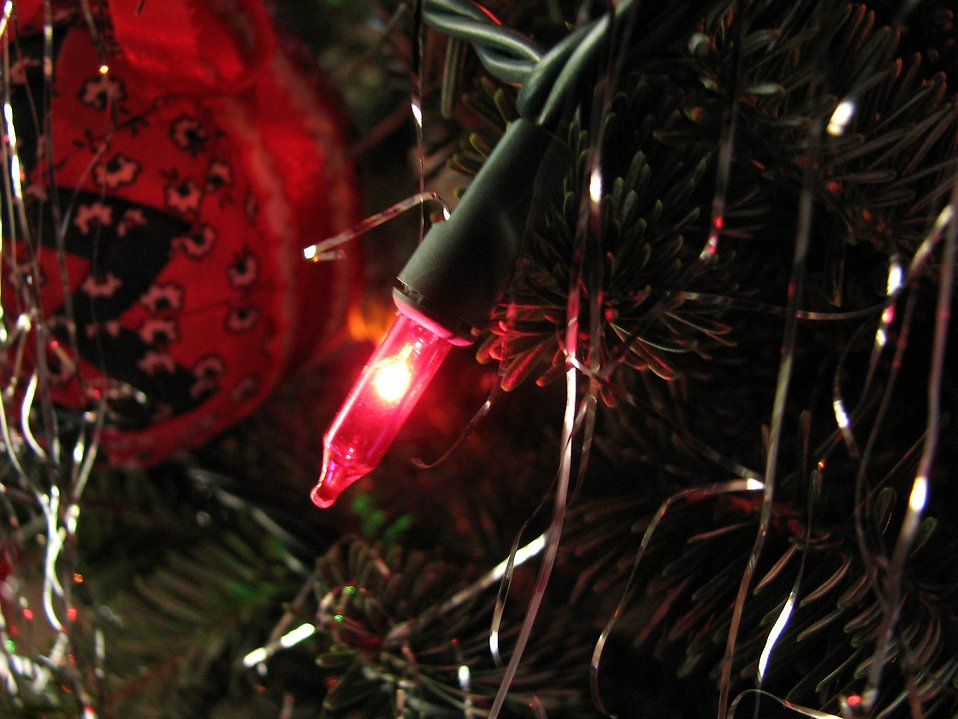 Closeup of a red light on a Christmas tree : Free Stock Photo
