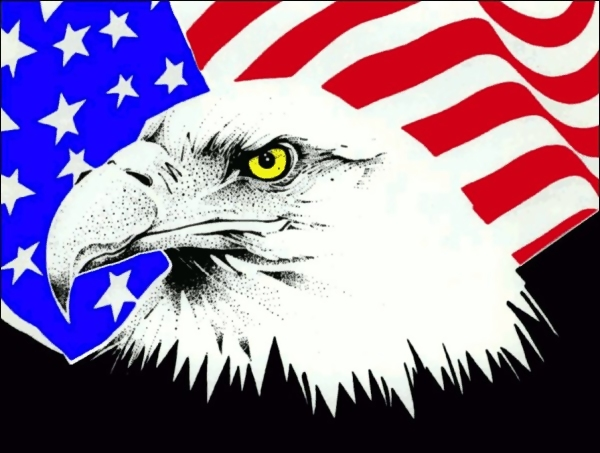 Eagle and American flag illustration : Free Stock Photo