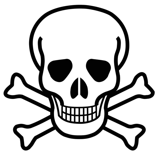 Skull and crossbones illustration : Free Stock Photo