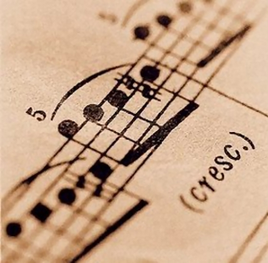 A closeup of sheet music : Free Stock Photo