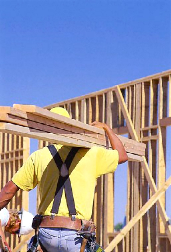 Construction worker with wood : Free Stock Photo