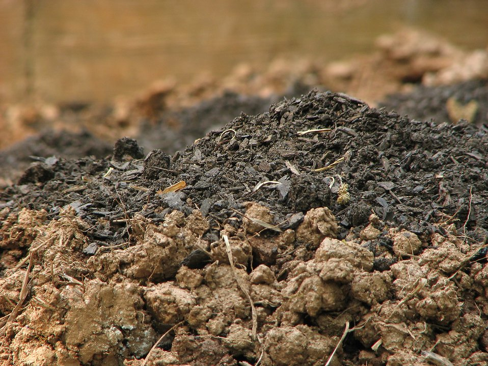 Closeup mounds of dirt : Free Stock Photo