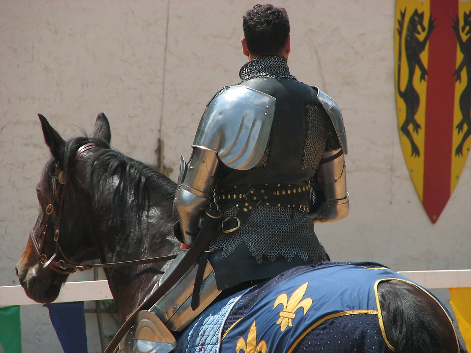 Back of knight on a horse : Free Stock Photo