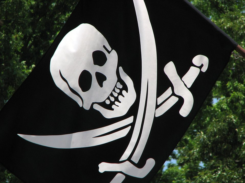 Skull and crossbones pirate flag : Free Stock Photo