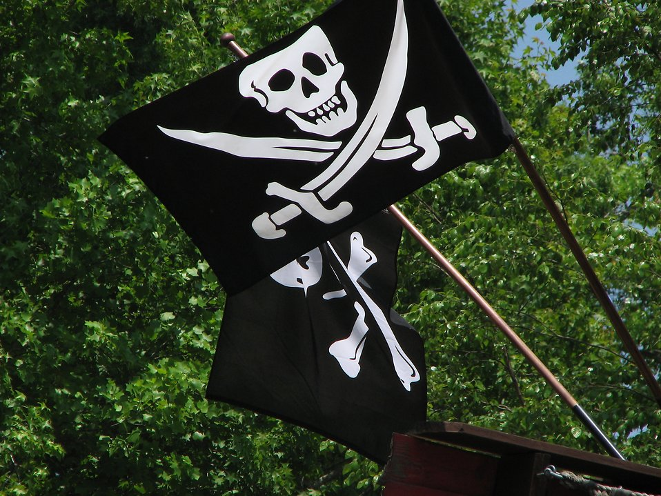 Two pirate flags : Free Stock Photo