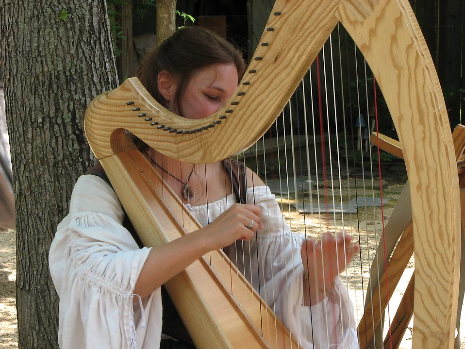 Medieval woman playing the harp : Free Stock Photo