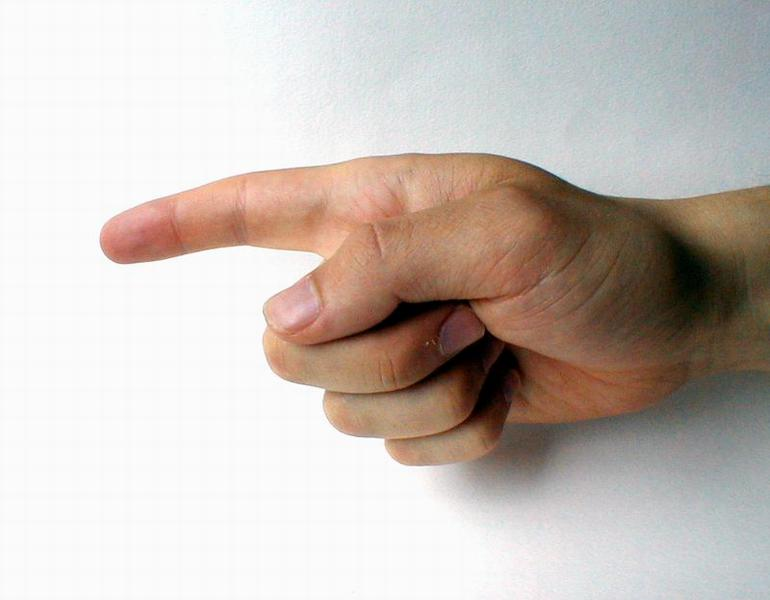 Closeup of a hand pointing a finger : Free Stock Photo