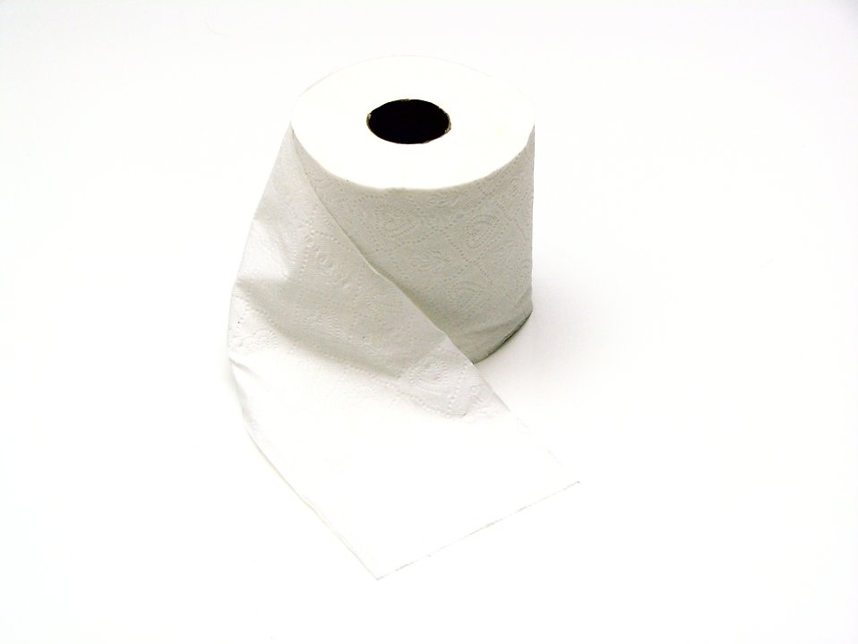 Roll of white toilet paper : Free Stock Photo