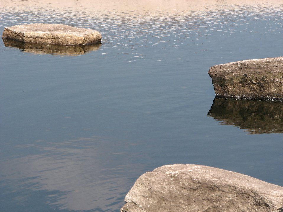 Rocks in a small pond : Free Stock Photo
