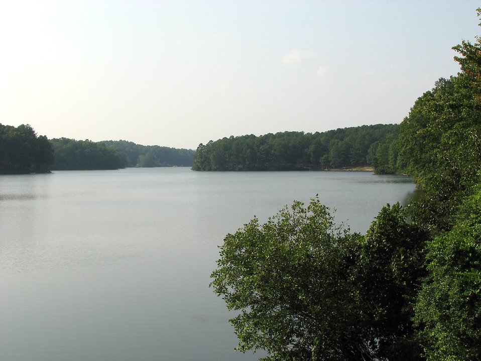 View of a lake surrounded by trees : Free Stock Photo