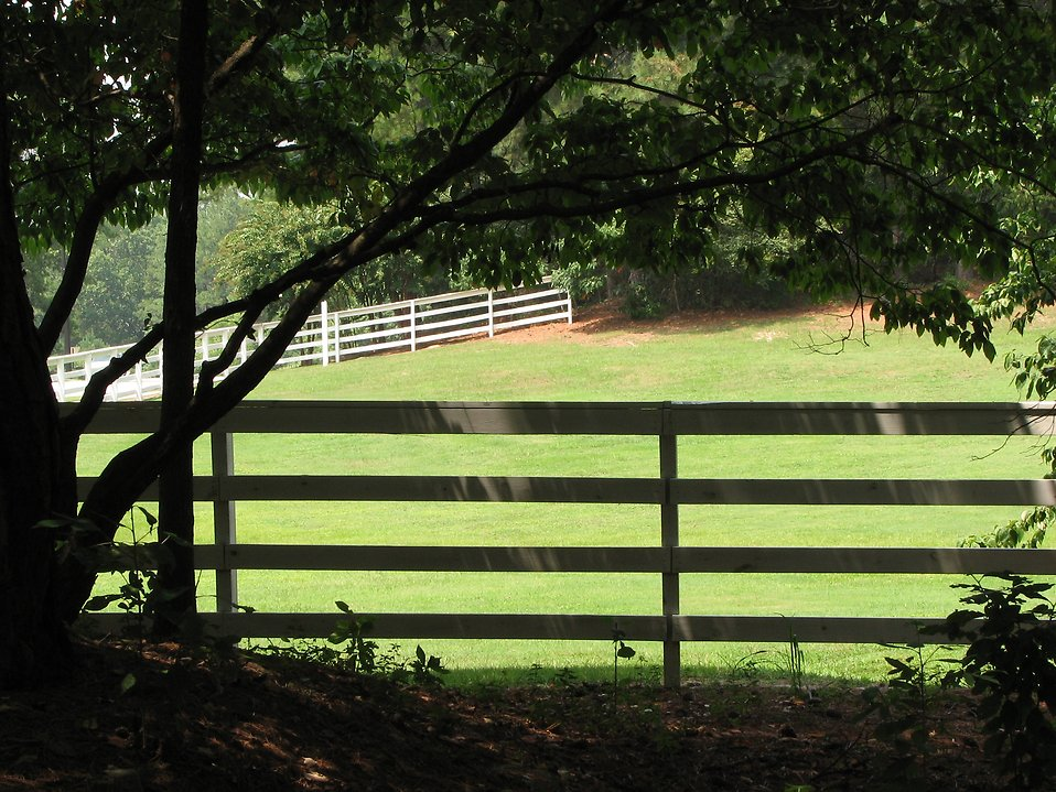 Fenced in yard of green grass : Free Stock Photo