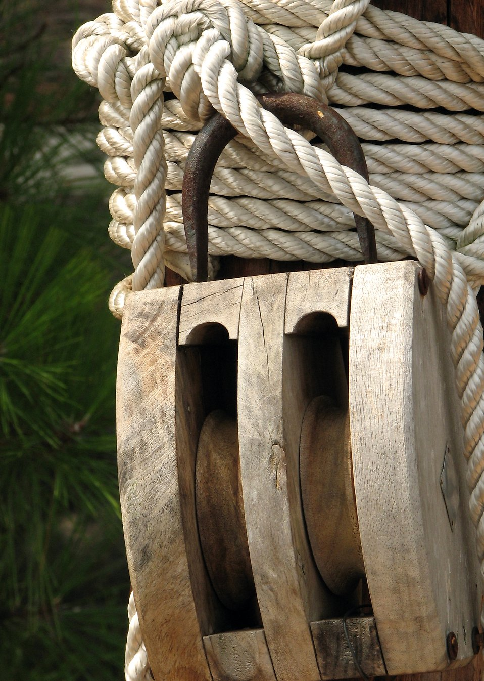 Closeup of rope and a wooden pulley : Free Stock Photo