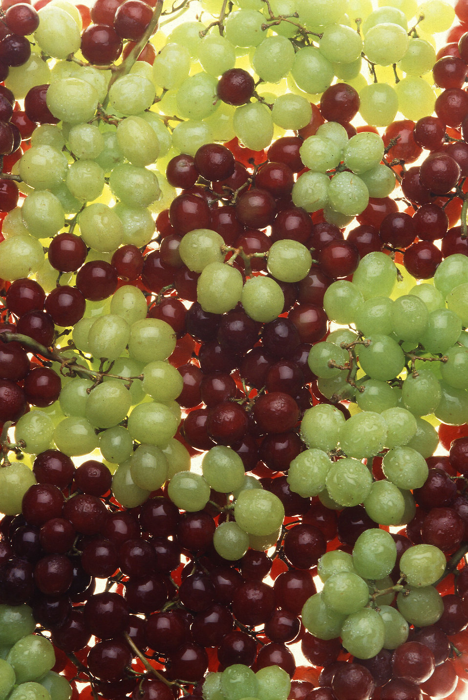 Bunches of green and red grapes : Free Stock Photo