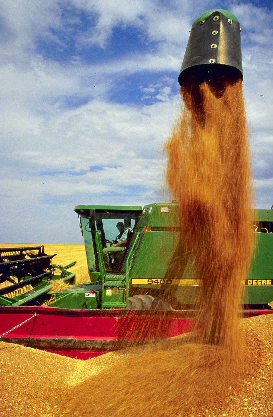 A combine dumping a harvested load of wheat : Free Stock Photo