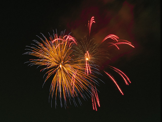 Colorful fireworks in the night sky : Free Stock Photo