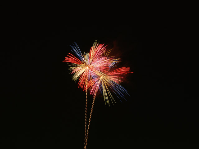 Fireworks in the night sky : Free Stock Photo