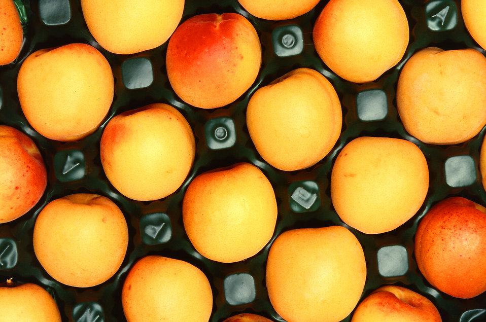 Apricots in a crate : Free Stock Photo