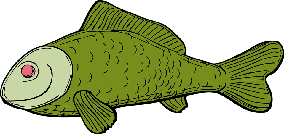 Illustration of a green fish : Free Stock Photo