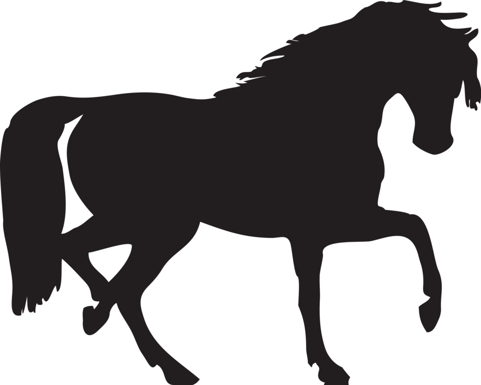 Illustration of a horse silhouette : Free Stock Photo