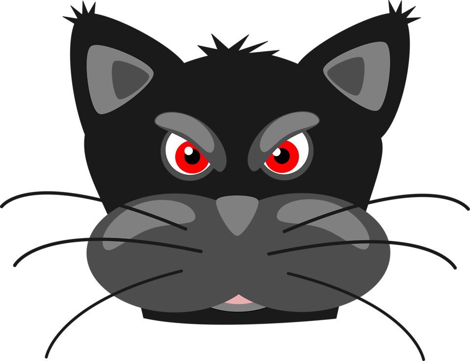 Illustration of an angry black cat : Free Stock Photo