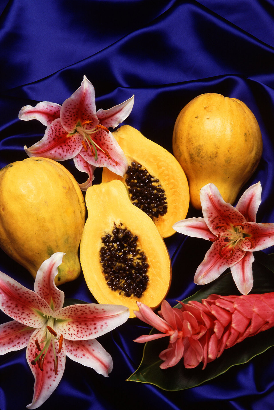 Hawaiian papayas (Carica papaya) displayed with pink flowers : Free Stock Photo