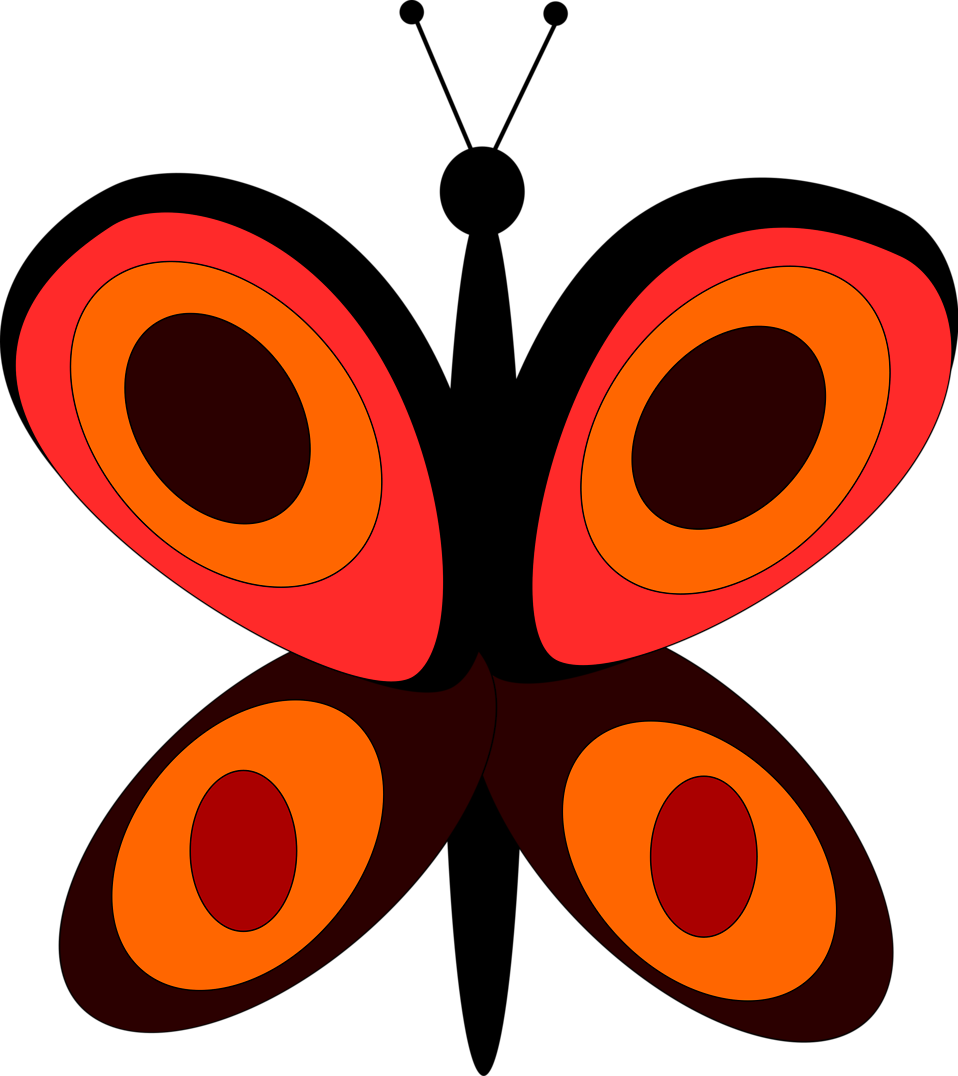 Illustration of an orange butterfly : Free Stock Photo