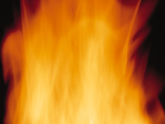 Close-up of a burning flame : Free Stock Photo