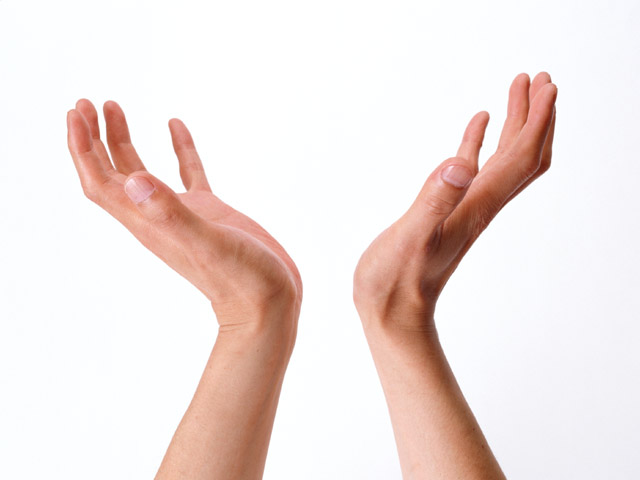 A pair of hands isolated on a white background : Free Stock Photo