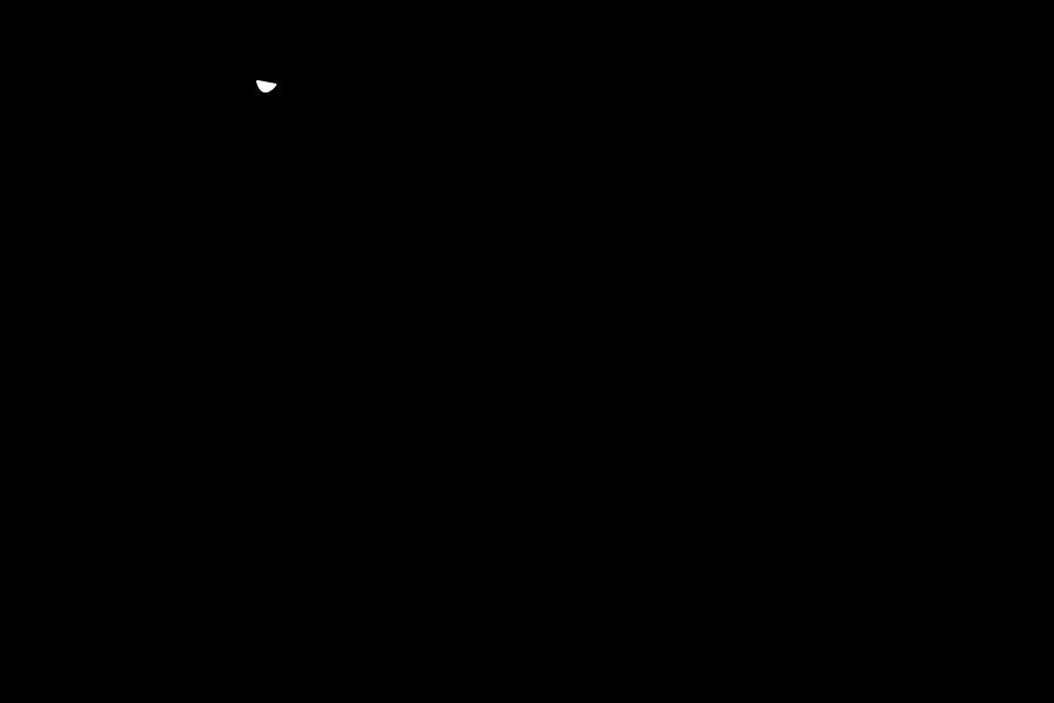 Illustration of a dragon silhouette : Free Stock Photo