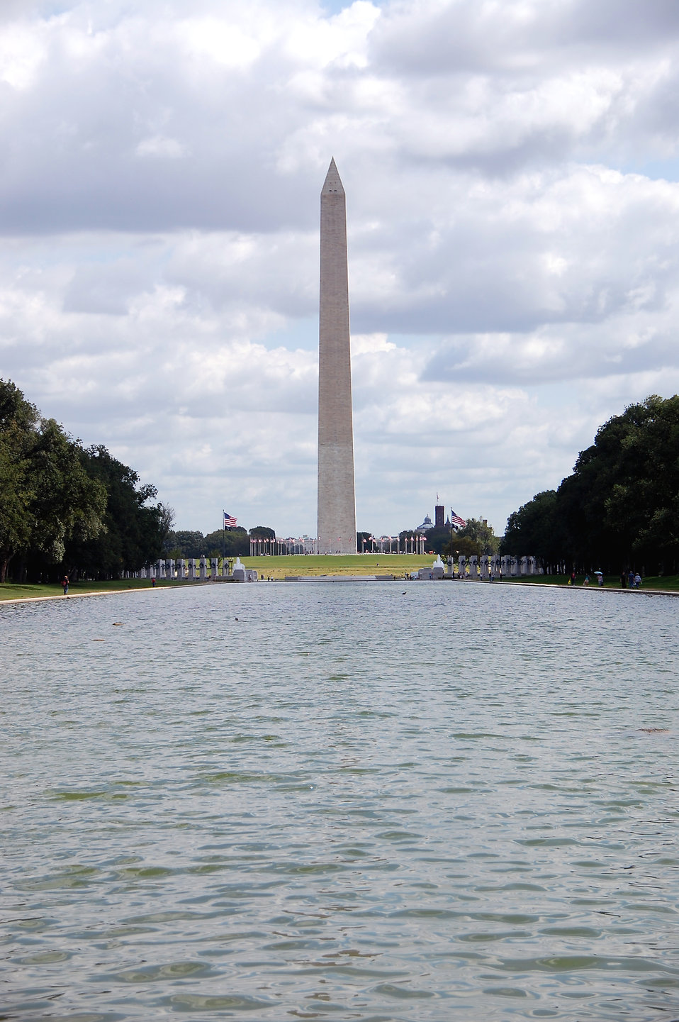 The Washington Monument viewed from the Lincoln Memorial Reflecting Pool in Washington, DC : Free Stock Photo