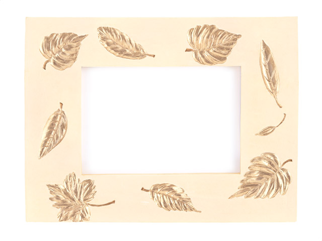 A blank picture frame with leaves : Free Stock Photo