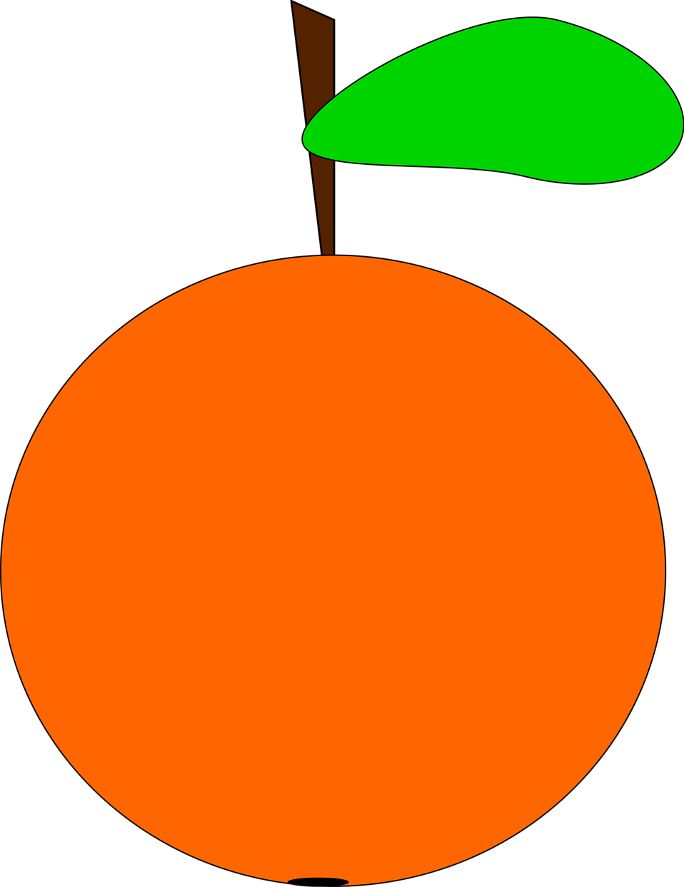 Illustration of an orange : Free Stock Photo