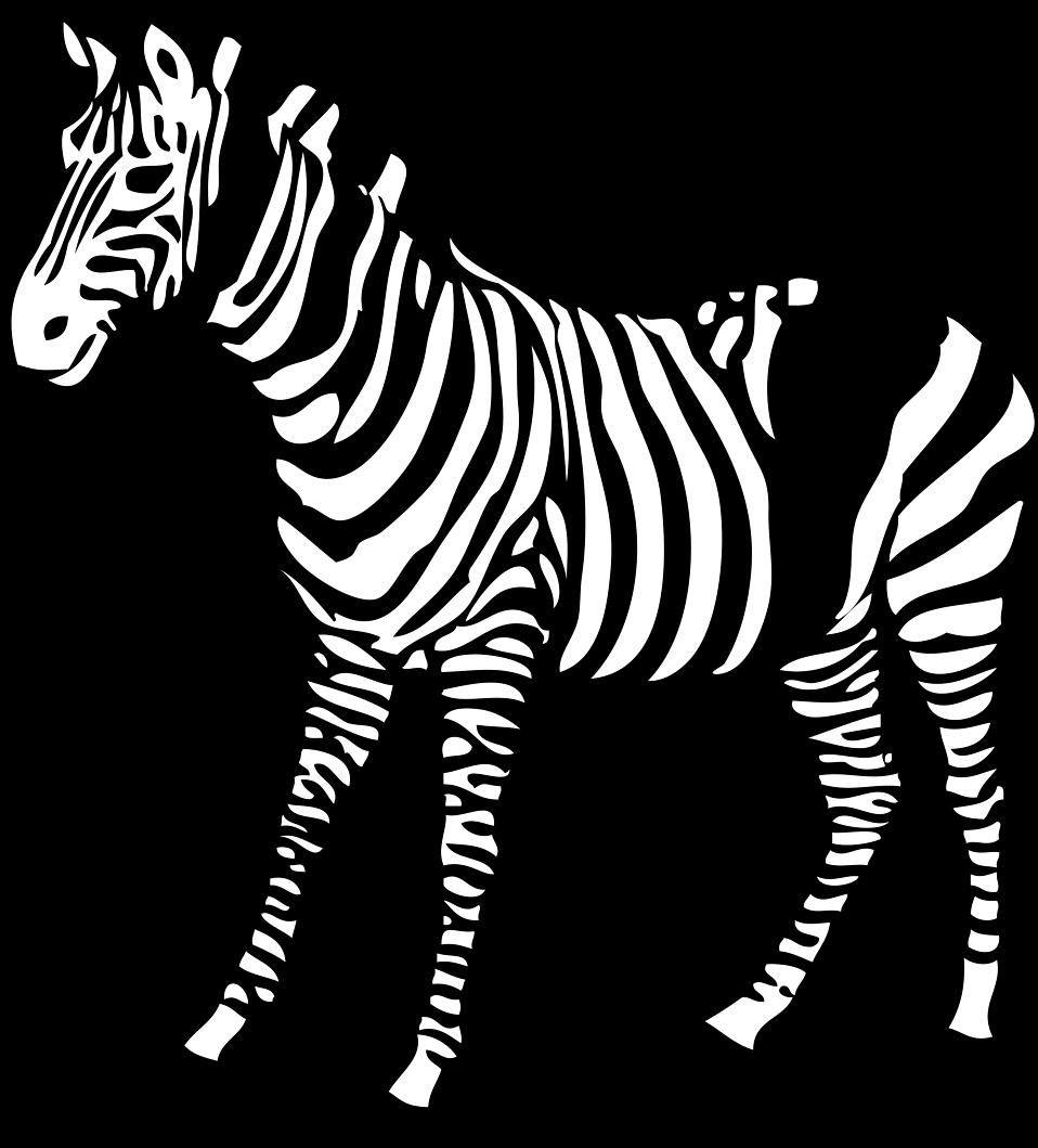 Illustration of a zebra : Free Stock Photo