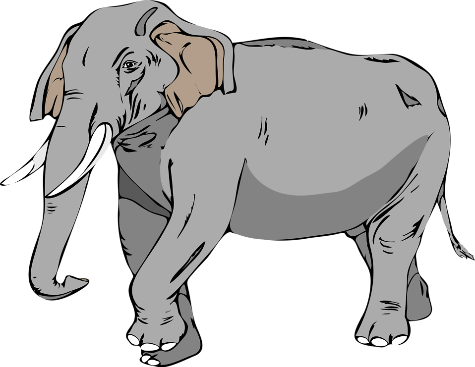 Illustration of an elephant : Free Stock Photo