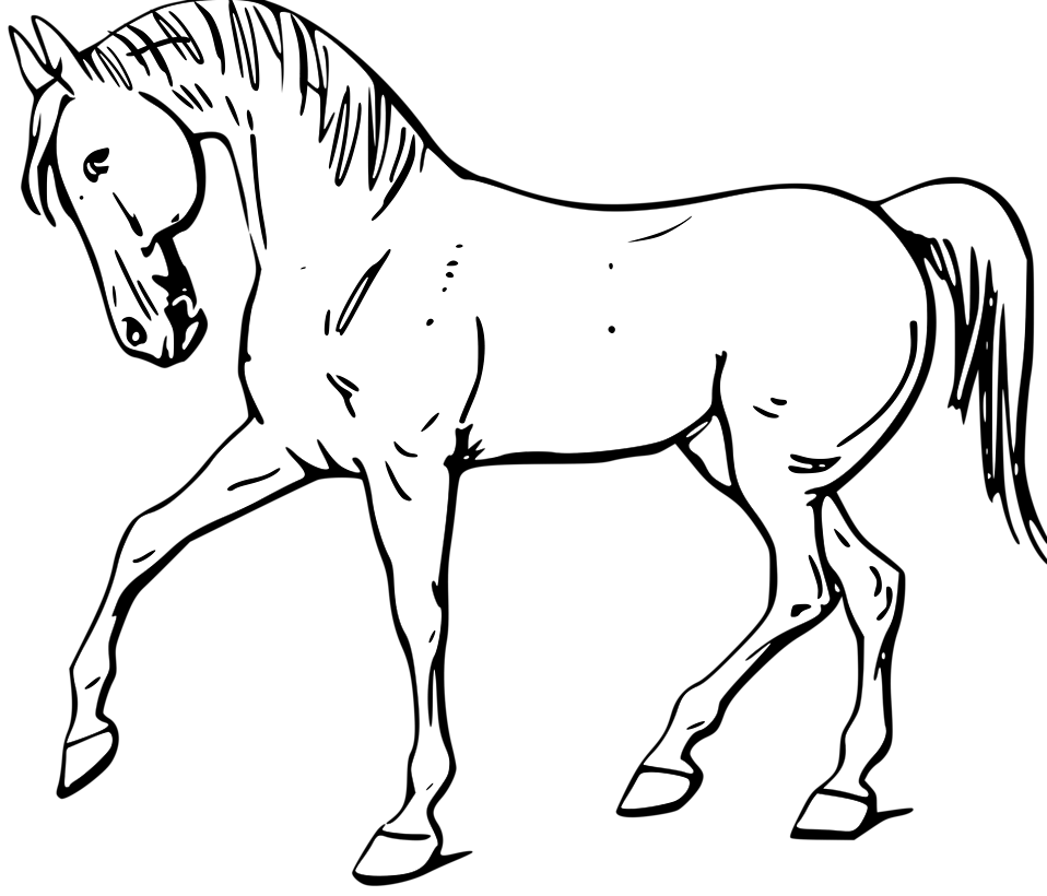 Illustration of a walking horse in black and white : Free Stock Photo