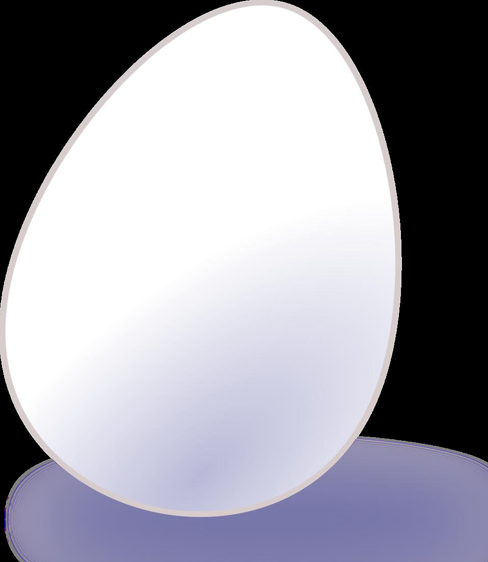 Illustration of a white egg : Free Stock Photo
