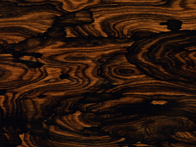 A wood grain texture : Free Stock Photo