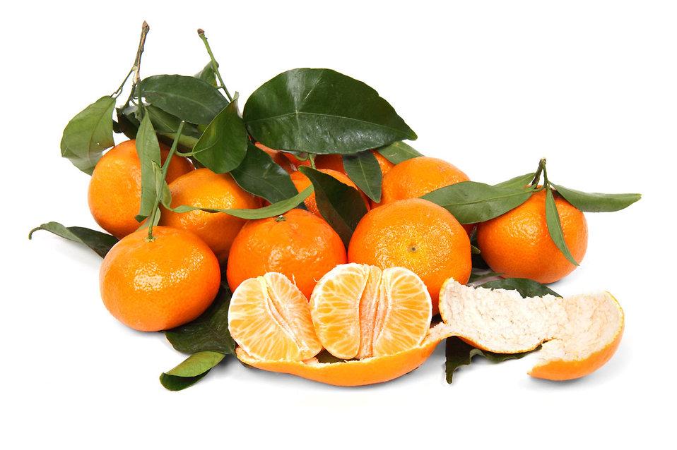 Mandarines isolated on a white background : Free Stock Photo