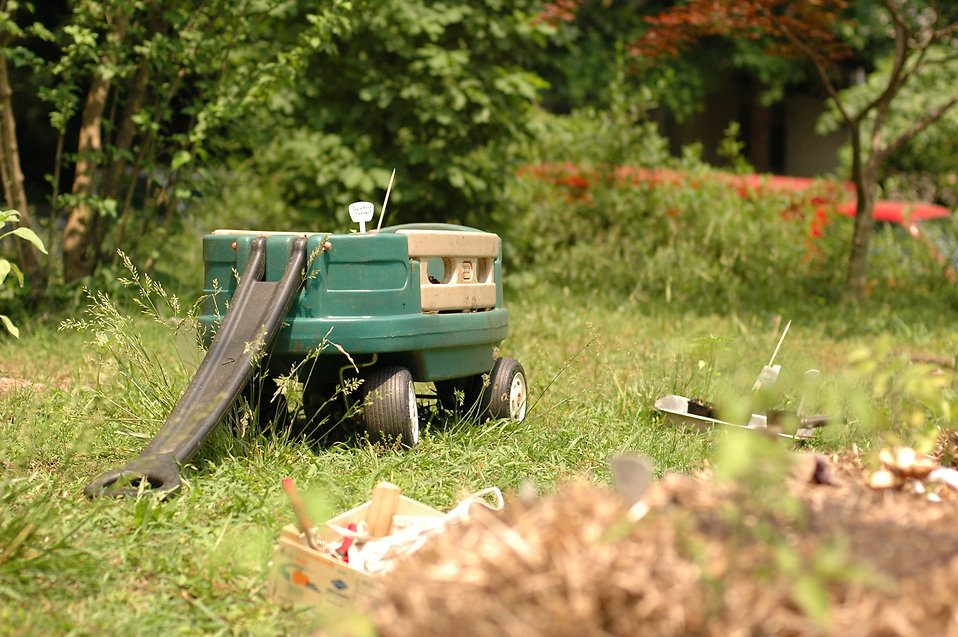 A green wagon in grass : Free Stock Photo